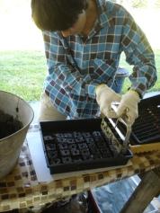 Emi - Raising seeds