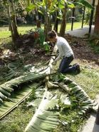 Ana Lucia - Banana grove