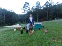 Hannah - Chook care