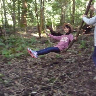 Rainforest playground