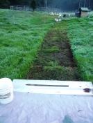 Path of destruction... for soil regeneration