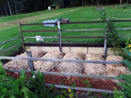 Double-dug beds ready for planting