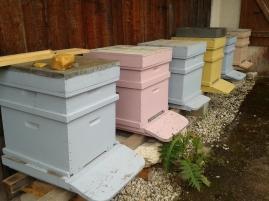 Modern beehives