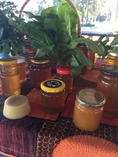 Herbs, honey, beeswax
