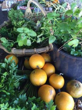 Local produce, chemical free, seasonal