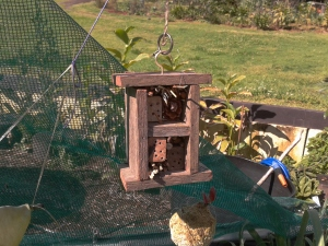 Mini insect hotel to hang out in the garden - by Isa